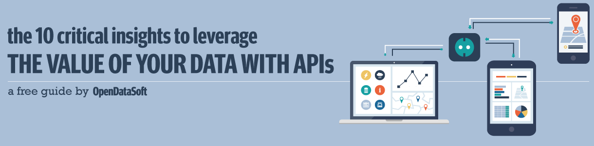free-api-guide-leverage-the-value-of-your-data-with-apis-opendatasoft-banner.png